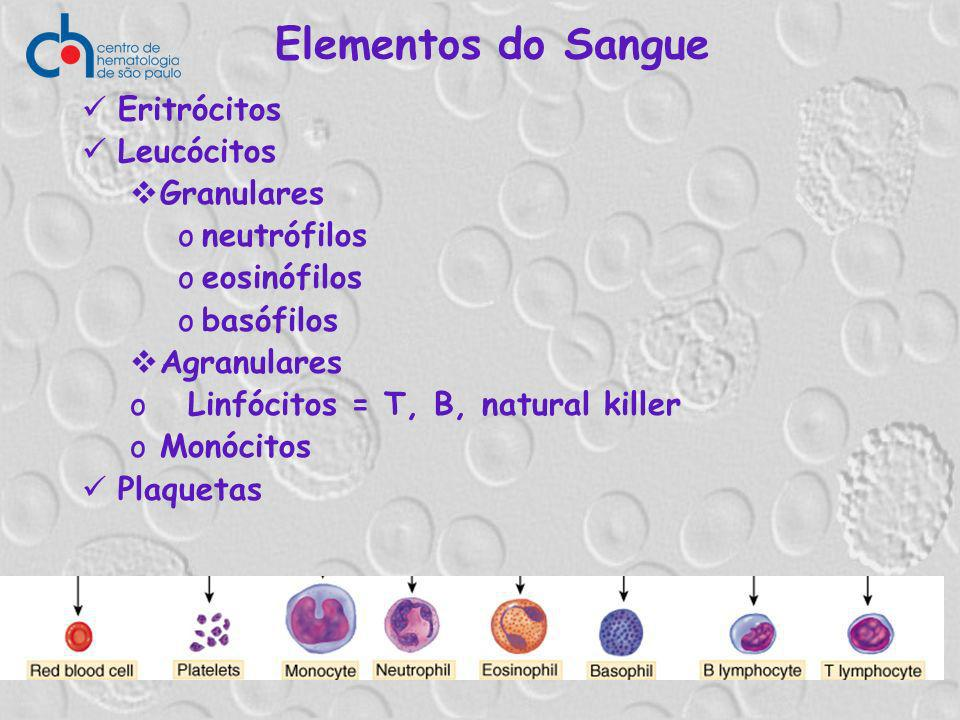 Elementos do Sangue Eritrócitos Leucócitos Granulares oneutrófilos oeosinófilos obasófilos Agranulares o Linfócitos = T, B, natural killer oMonócitos