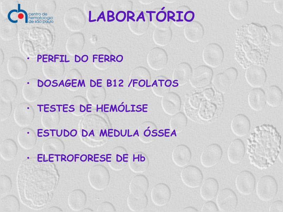 PERFIL DO FERRO DOSAGEM DE B12 /FOLATOS TESTES DE HEMÓLISE ESTUDO DA MEDULA ÓSSEA ELETROFORESE DE Hb LABORATÓRIO