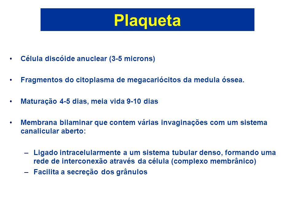 Plaqueta Célula discóide anuclear (3-5 microns) Fragmentos do citoplasma de megacariócitos da medula óssea. Maturação 4-5 dias, meia vida 9-10 dias Me
