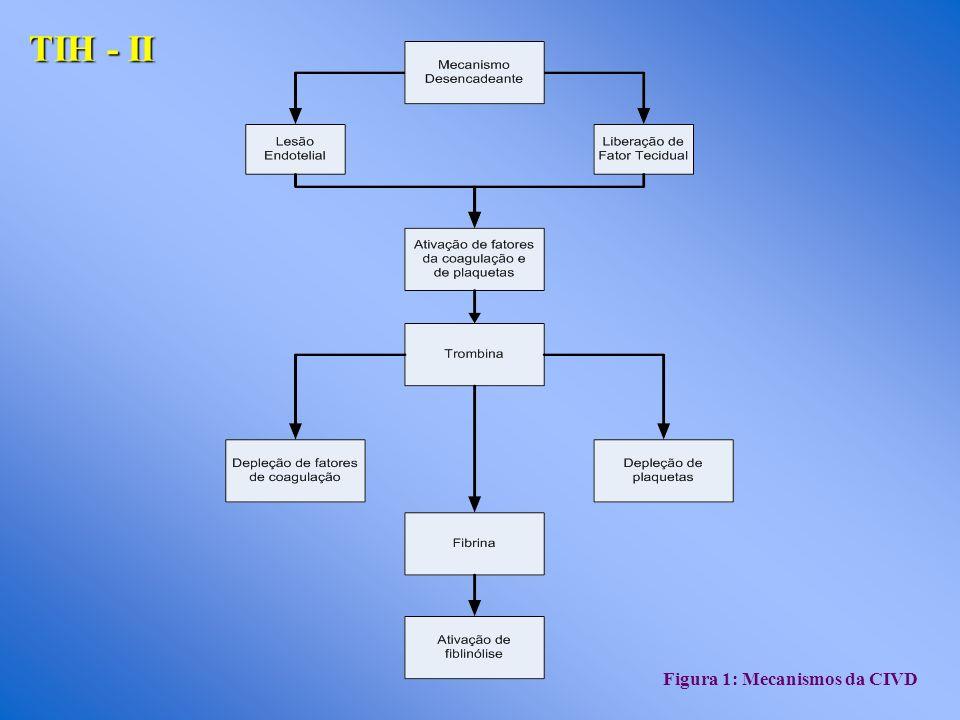 TIH - ΙΙ Figura 1: Mecanismos da CIVD