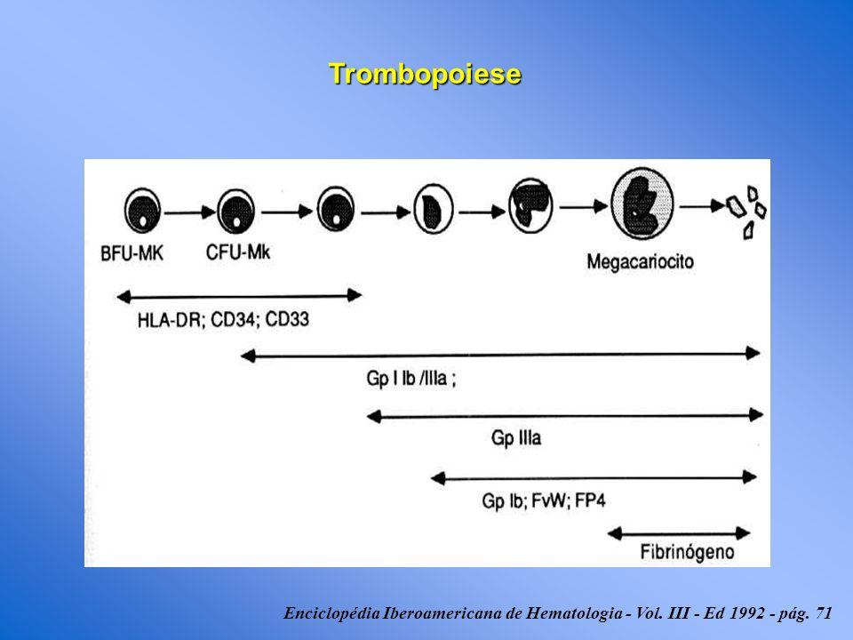 Outras Causas Transfusão Maciça Hiperesplenismo Destruição Destruição Produção Produção Deficiência da MO Eritropoiese Ineficaz Não Imunológica Imunológica AplasiaQTRTInfecçãoToxinaDrogasInfiltração Anemia Megaloblástica CIVDPTTSHUVasculitesCEC Drogas(TIH) AloImune Auto Imune P Neonatal PPT PTILESLPHIVHCV TROMBOCITOPENIA Fig.