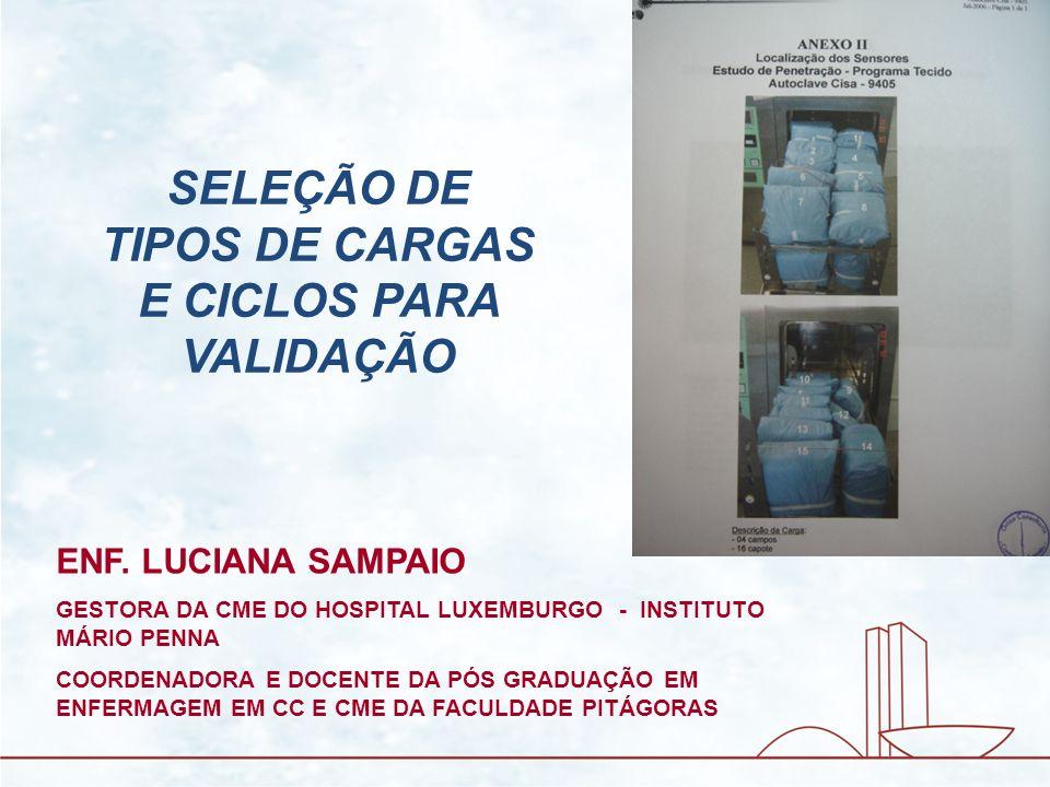 GESTORA DA CME DO HOSPITAL LUXEMBURGO - INSTITUTO MÁRIO PENNA COORDENADORA E DOCENTE DA PÓS GRADUAÇÃO EM ENFERMAGEM EM CC E CME DA FACULDADE PITÁGORAS