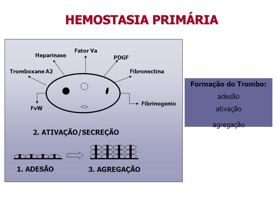 Fator Va PDGF Fibrinogenio Heparinase Tromboxane A2 FvW Fibronectina 1. ADESÃO 3. AGREGAÇÃO 2. ATIVAÇÃO/SECREÇÃO HEMOSTASIA PRIMÁRIA Formação do Tromb