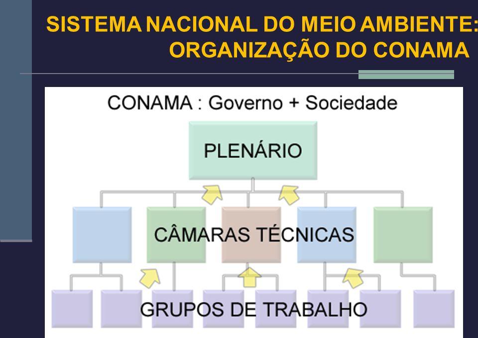 13 SISTEMA NACIONAL DO MEIO AMBIENTE: ORGANIZAÇÃO DO CONAMA