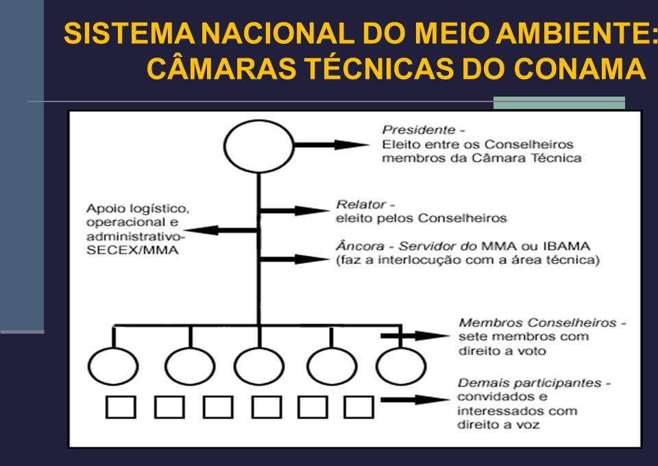 18 SISTEMA NACIONAL DO MEIO AMBIENTE: CÂMARAS TÉCNICAS DO CONAMA