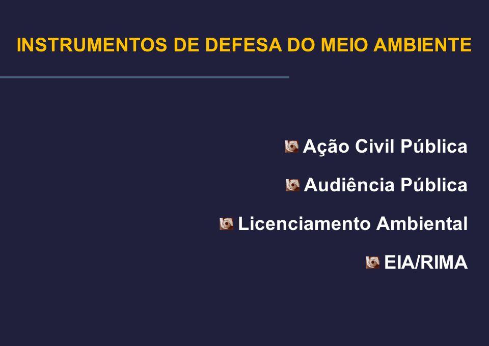 Ação Civil Pública Audiência Pública Licenciamento Ambiental EIA/RIMA INSTRUMENTOS DE DEFESA DO MEIO AMBIENTE