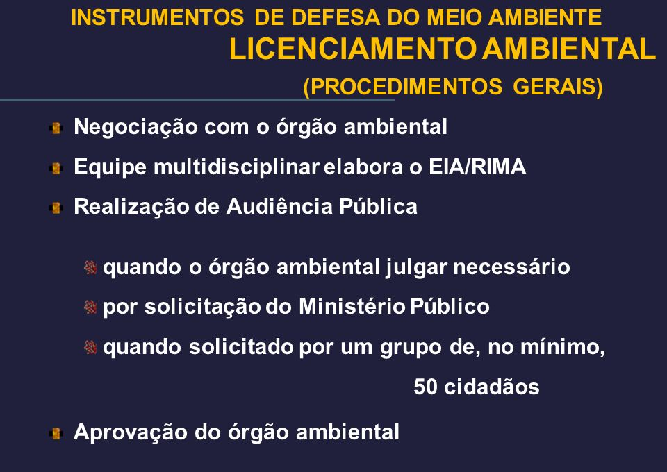 Negociação com o órgão ambiental Equipe multidisciplinar elabora o EIA/RIMA Realização de Audiência Pública quando o órgão ambiental julgar necessário