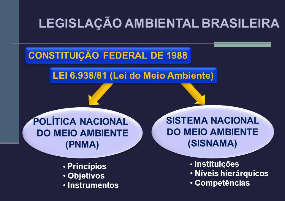 LEI 6.938/81 (Lei do Meio Ambiente) POLÍTICA NACIONAL DO MEIO AMBIENTE (PNMA) POLÍTICA NACIONAL DO MEIO AMBIENTE (PNMA) SISTEMA NACIONAL DO MEIO AMBIE