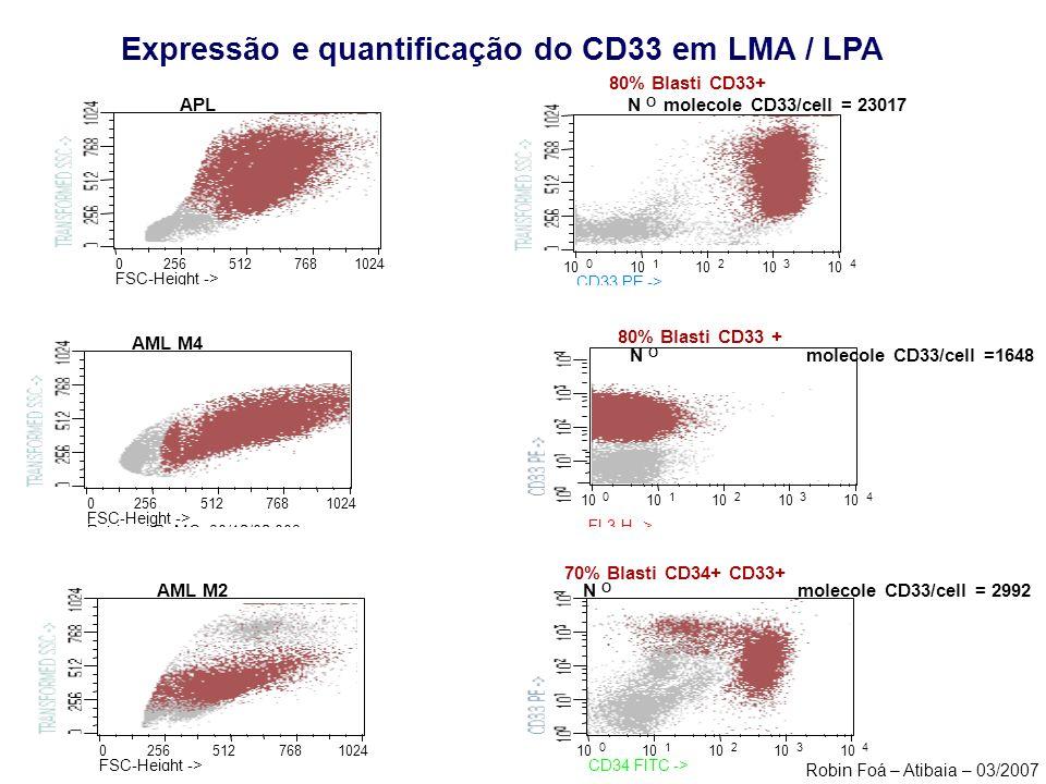 Petriconi R. MO 30/12/02.003 FL3-H -> 80% Blasti CD33 + N O molecole CD33/cell =1648 02565127681024 Caboni ext 19/12/02.003 FSC-Height -> AML M2 10 01