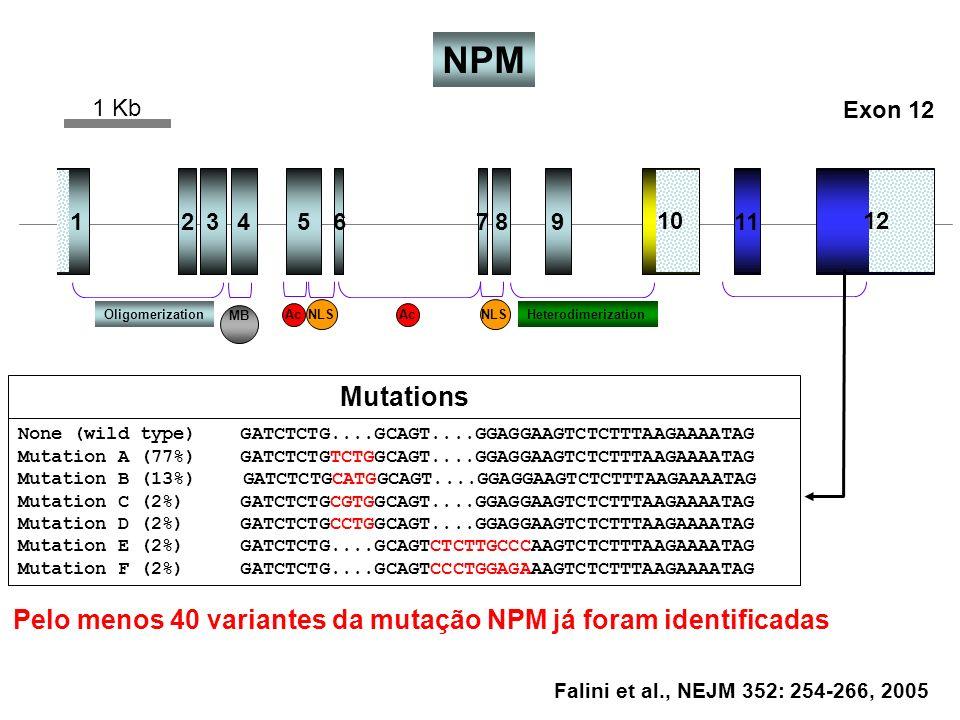 12345678911 1012 OligomerizationHeterodimerizationAc NLS MB Falini et al., NEJM 352: 254-266, 2005 NPM 1 Kb Mutations None (wild type) GATCTCTG....GCA