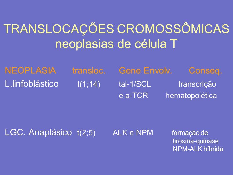 TRANSLOCAÇÕES CROMOSSÔMICAS neoplasias de célula T NEOPLASIAtransloc.Gene Envolv. Conseq. L.linfoblástico t(1;14)tal-1/SCL transcrição e a-TCRhematopo