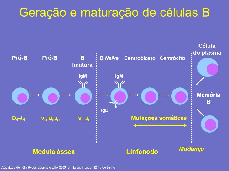 Maturação das células B normais e expressão do CD20 Célula tronco Célula pré-pré B Célula pré-B Célula B imatura Célula B madura Célula B ativada Plasmó- cito CD 38 Célula pré-B Célula pré-B TDT CD 19 CD 20 CD 22 CD 21
