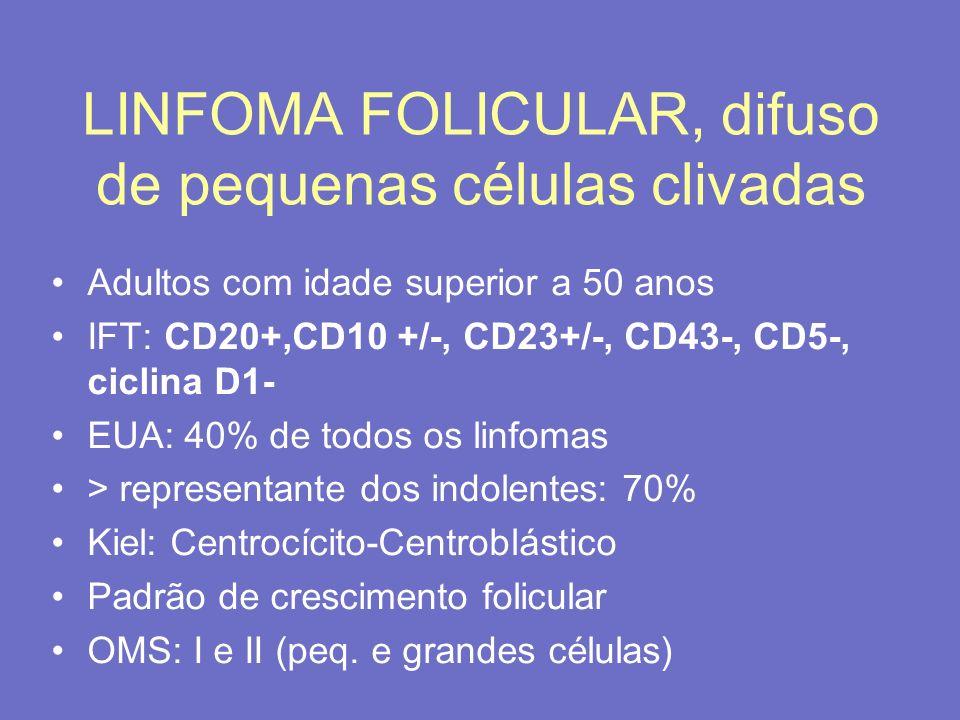 LINFOMA FOLICULAR, difuso de pequenas células clivadas Adultos com idade superior a 50 anos IFT: CD20+,CD10 +/-, CD23+/-, CD43-, CD5-, ciclina D1- EUA