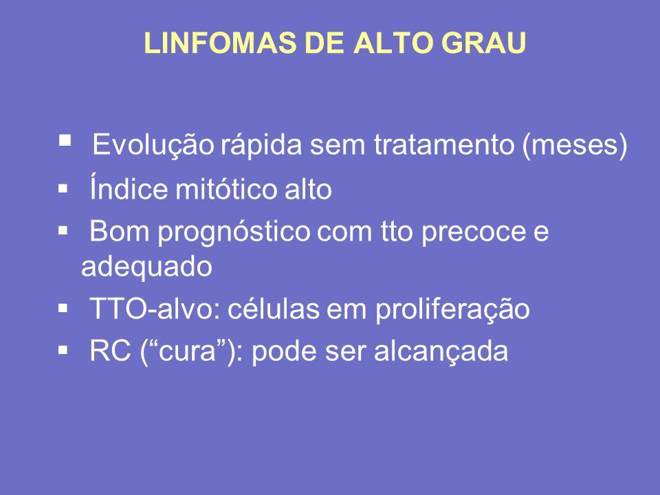 LINFOMAS DE ALTO GRAU Evolução rápida sem tratamento (meses) Índice mitótico alto Bom prognóstico com tto precoce e adequado TTO-alvo: células em prol