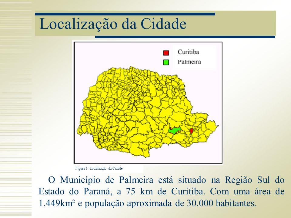 Localização da Cidade O Município de Palmeira está situado na Região Sul do Estado do Paraná, a 75 km de Curitiba. Com uma área de 1.449km² e populaçã