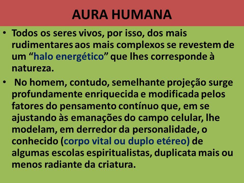 AURA HUMANA Todos os seres vivos, por isso, dos mais rudimentares aos mais complexos se revestem de um halo energético que lhes corresponde à natureza
