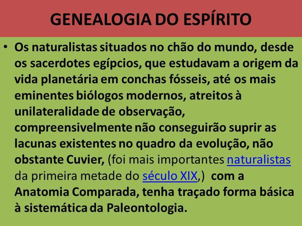 GENEALOGIA DO ESPÍRITO Os naturalistas situados no chão do mundo, desde os sacerdotes egípcios, que estudavam a origem da vida planetária em conchas f