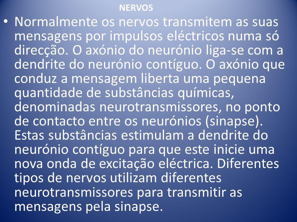 Normalmente os nervos transmitem as suas mensagens por impulsos eléctricos numa só direcção. O axónio do neurónio liga-se com a dendrite do neurónio c