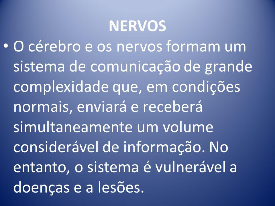 O cérebro e os nervos formam um sistema de comunicação de grande complexidade que, em condições normais, enviará e receberá simultaneamente um volume