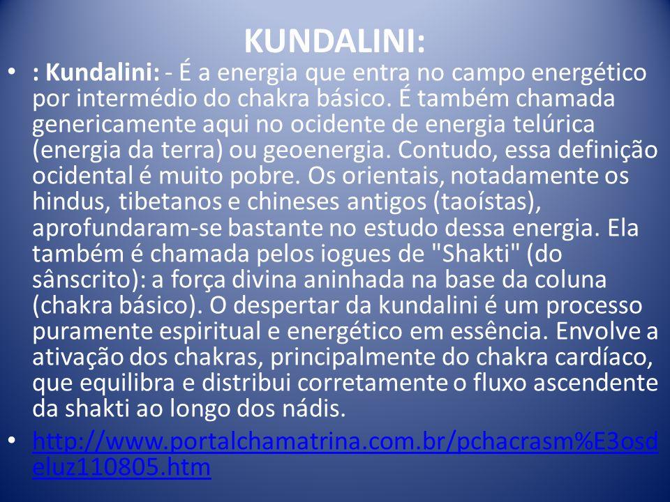 KUNDALINI: : Kundalini: - É a energia que entra no campo energético por intermédio do chakra básico. É também chamada genericamente aqui no ocidente d