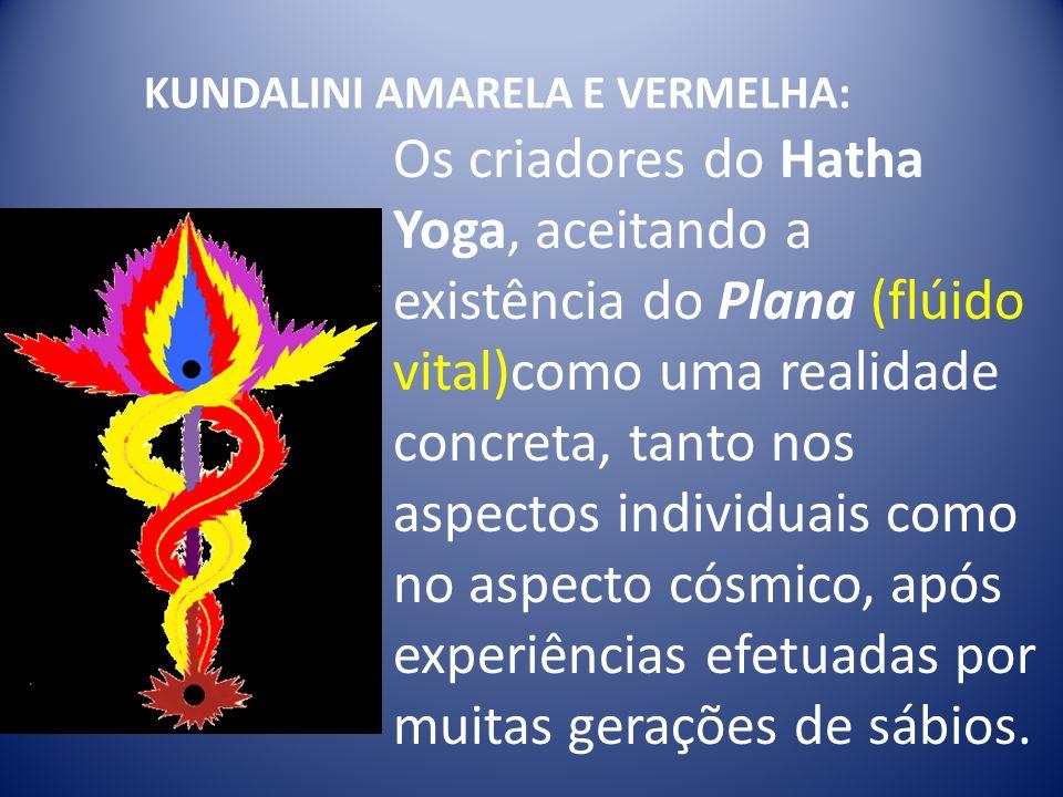 KUNDALINI AMARELA E VERMELHA: Os criadores do Hatha Yoga, aceitando a existência do Plana (flúido vital)como uma realidade concreta, tanto nos aspecto