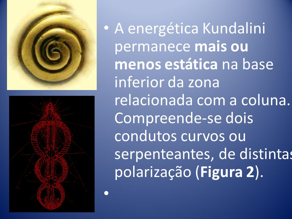 A energética Kundalini permanece mais ou menos estática na base inferior da zona relacionada com a coluna. Compreende-se dois condutos curvos ou serpe