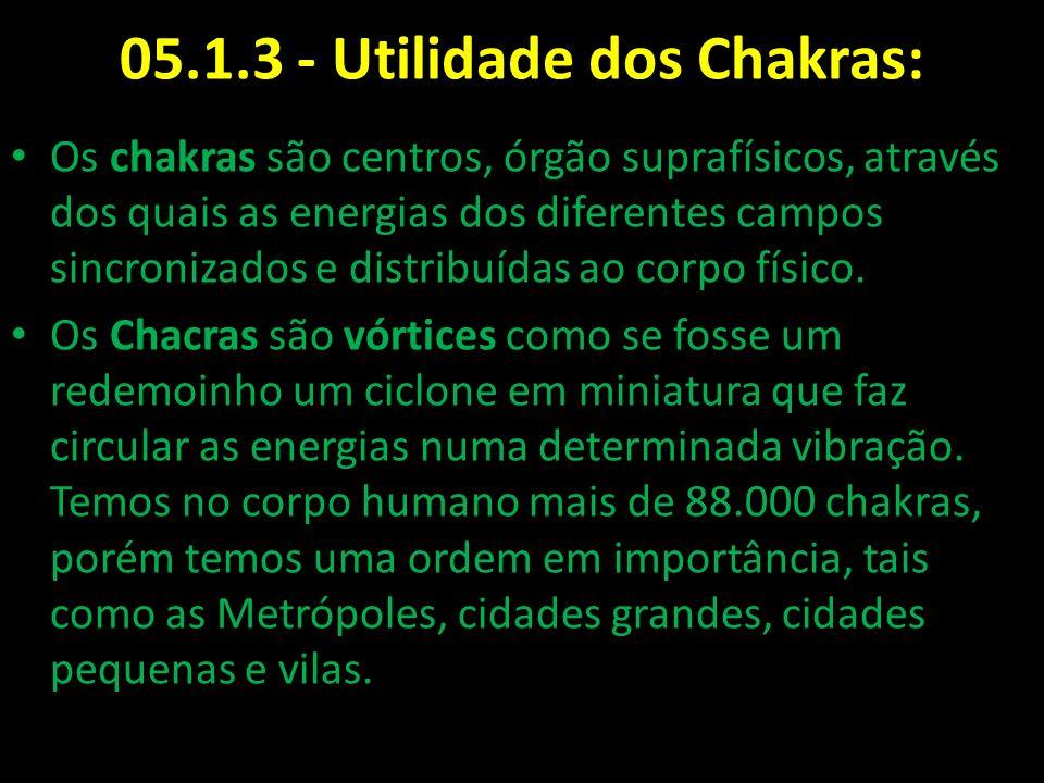 05.1.3 - Utilidade dos Chakras: Os chakras são centros, órgão suprafísicos, através dos quais as energias dos diferentes campos sincronizados e distri