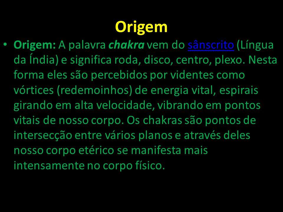 Origem Origem: A palavra chakra vem do sânscrito (Língua da Índia) e significa roda, disco, centro, plexo. Nesta forma eles são percebidos por vidente