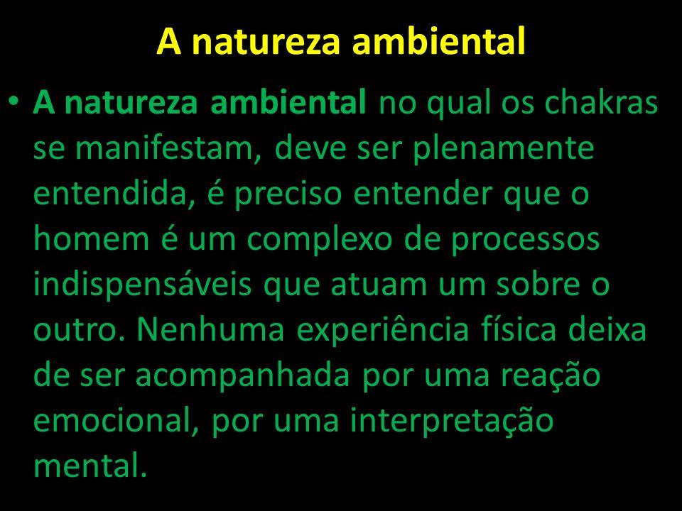 A natureza ambiental A natureza ambiental no qual os chakras se manifestam, deve ser plenamente entendida, é preciso entender que o homem é um complex