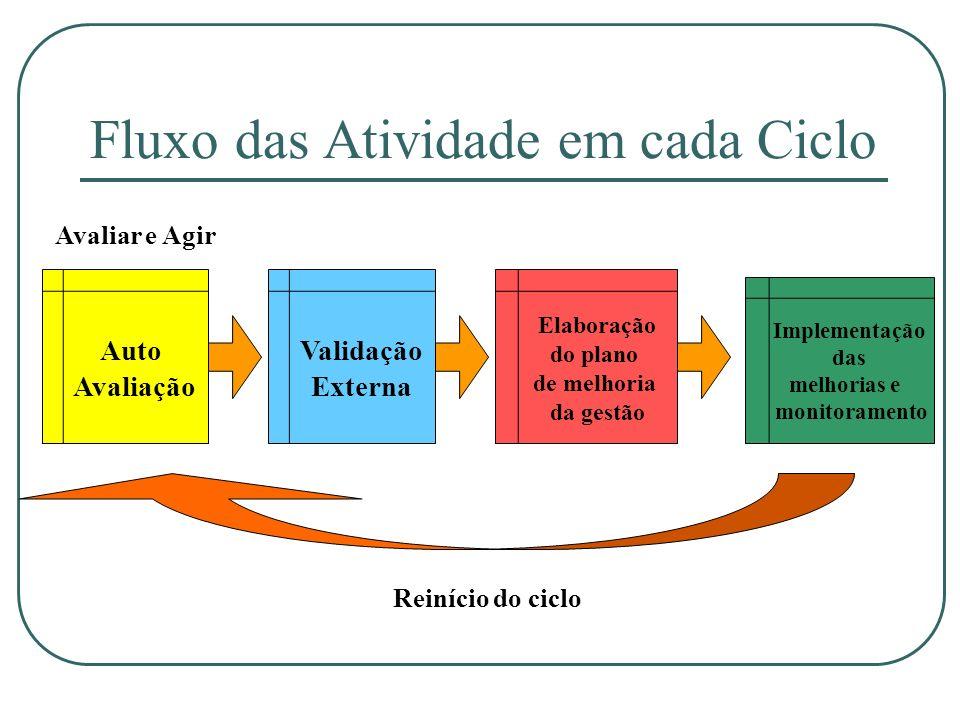 Fluxo das Atividade em cada Ciclo Auto Avaliação Validação Externa Implementação das melhorias e monitoramento Elaboração do plano de melhoria da gest