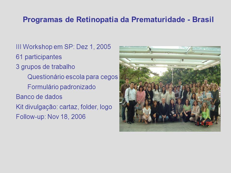 III Workshop em SP: Dez 1, 2005 61 participantes 3 grupos de trabalho Questionário escola para cegos Formulário padronizado Banco de dados Kit divulga