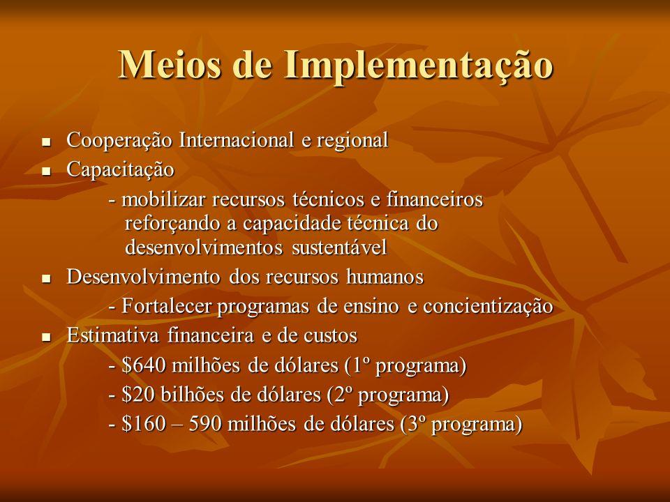 Meios de Implementação Cooperação Internacional e regional Cooperação Internacional e regional Capacitação Capacitação - mobilizar recursos técnicos e financeiros reforçando a capacidade técnica do desenvolvimentos sustentável Desenvolvimento dos recursos humanos Desenvolvimento dos recursos humanos - Fortalecer programas de ensino e concientização Estimativa financeira e de custos Estimativa financeira e de custos - $640 milhões de dólares (1º programa) - $20 bilhões de dólares (2º programa) - $160 – 590 milhões de dólares (3º programa)