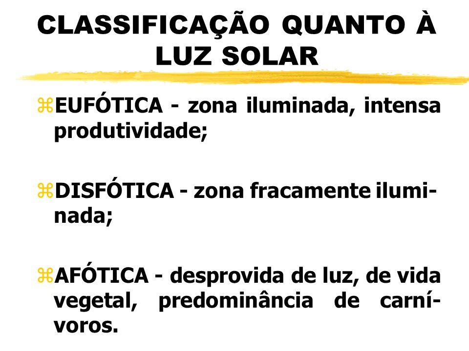 CLASSIFICAÇÃO QUANTO À LUZ SOLAR zEUFÓTICA - zona iluminada, intensa produtividade; zDISFÓTICA - zona fracamente ilumi- nada; zAFÓTICA - desprovida de