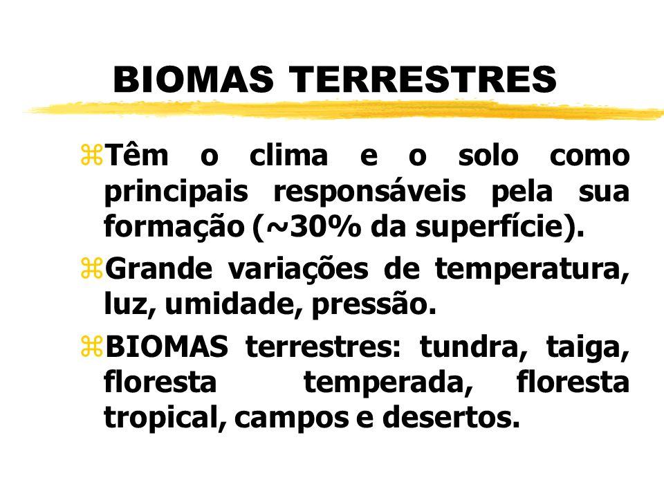 BIOMAS TERRESTRES zTêm o clima e o solo como principais responsáveis pela sua formação (~30% da superfície). zGrande variações de temperatura, luz, um