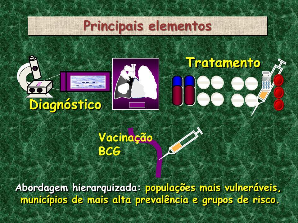 Principais elementos Diagnóstico Tratamento Vacinação BCG Abordagem hierarquizada: populações mais vulneráveis, municípios de mais alta prevalência e