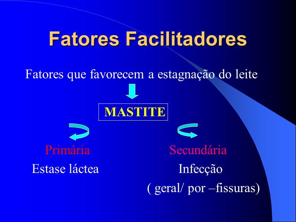 Tratamento Fazem parte do tratamento : Repouso materno Analgésicos/antiinflamatórios Hidratação abundante Compressas ( .