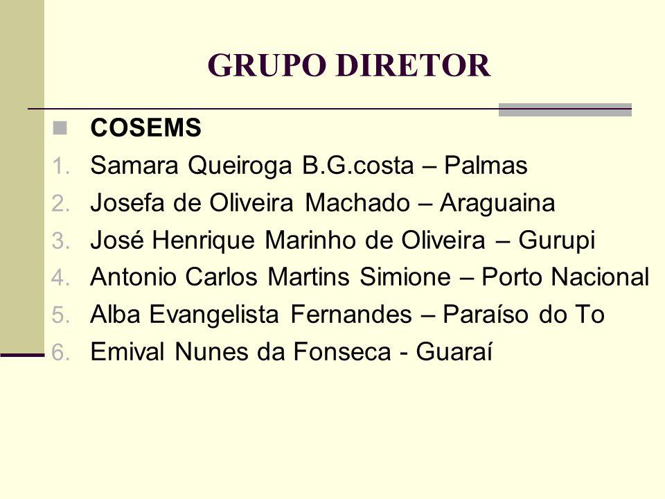 GRUPO DIRETOR COSEMS 1. Samara Queiroga B.G.costa – Palmas 2. Josefa de Oliveira Machado – Araguaina 3. José Henrique Marinho de Oliveira – Gurupi 4.