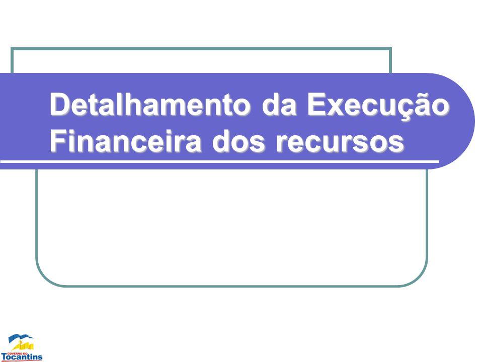 Detalhamento da Execução Financeira dos recursos