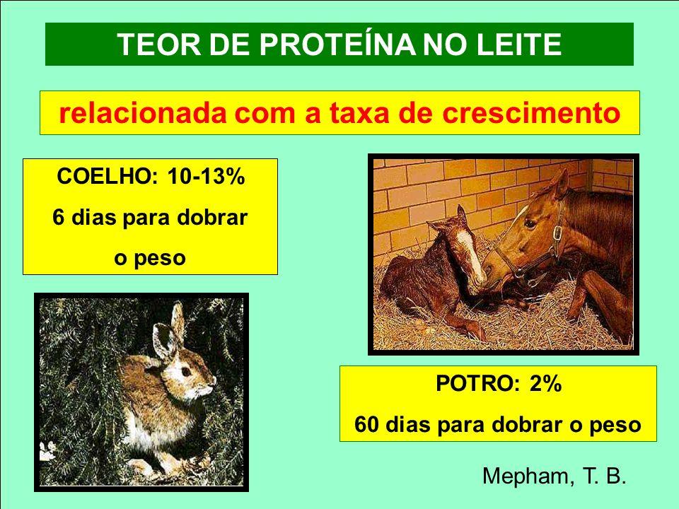 TEOR DE PROTEÍNA NO LEITE relacionada com a taxa de crescimento POTRO: 2% 60 dias para dobrar o peso COELHO: 10-13% 6 dias para dobrar o peso Mepham,