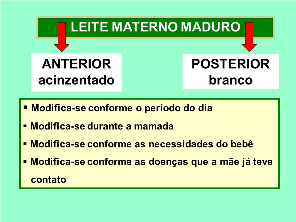 LEITE MATERNO MADURO Modifica-se conforme o período do dia Modifica-se durante a mamada Modifica-se conforme as necessidades do bebê Modifica-se confo