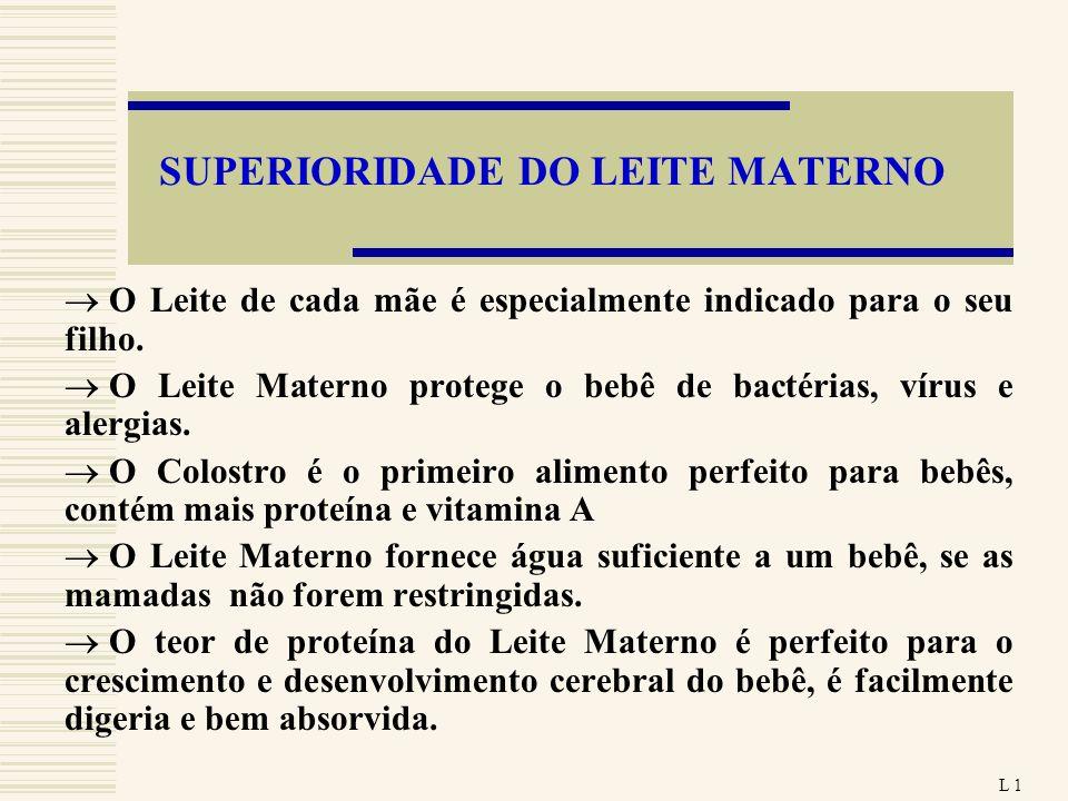 SUPERIORIDADE DO LEITE MATERNO O Leite de cada mãe é especialmente indicado para o seu filho. O Leite Materno protege o bebê de bactérias, vírus e ale