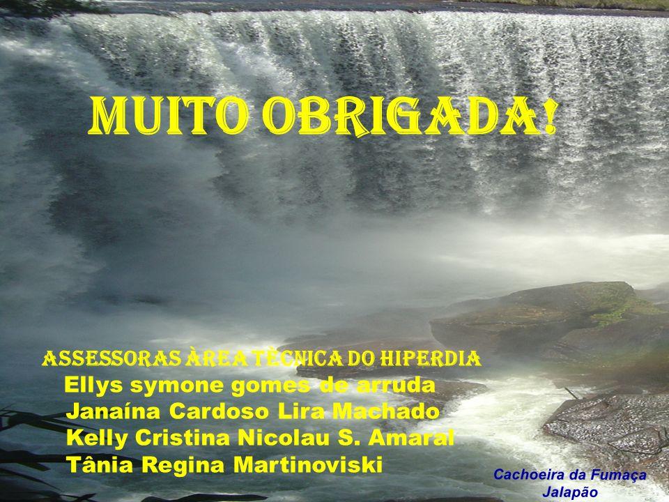 Laudecy Alves do Carmo ESTADO DO TOCANTINS Cachoeira da Fumaça Jalapão MUITO OBRIGADA! ASSESSORAS ÀREA TÈCNICA DO HIPERDIA Ellys symone gomes de arrud
