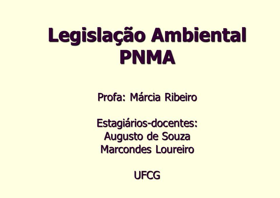 Composição CONAMA (106) Governo Federal: 37 membros Governos Estaduais: 27 Governos Municipais: 8 Rep.