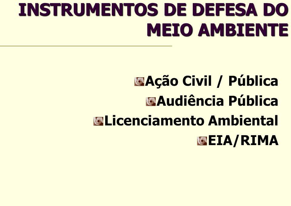 INSTRUMENTOS DE DEFESA DO MEIO AMBIENTE Ação Civil / Pública Audiência Pública Licenciamento Ambiental EIA/RIMA