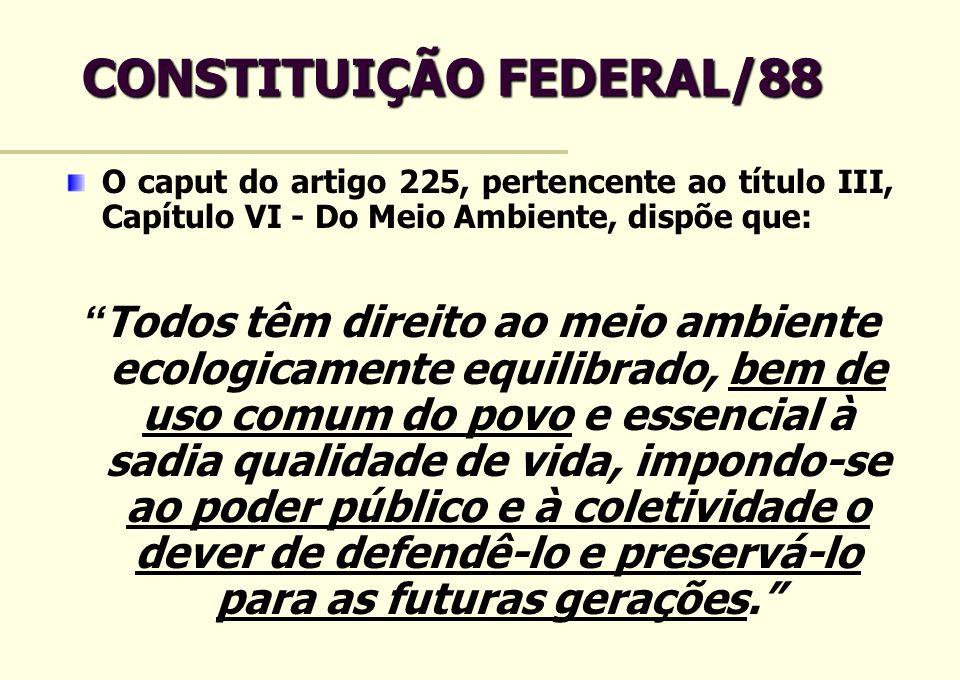 CONSTITUIÇÃO FEDERAL/88 O caput do artigo 225, pertencente ao título III, Capítulo VI - Do Meio Ambiente, dispõe que: Todos têm direito ao meio ambien