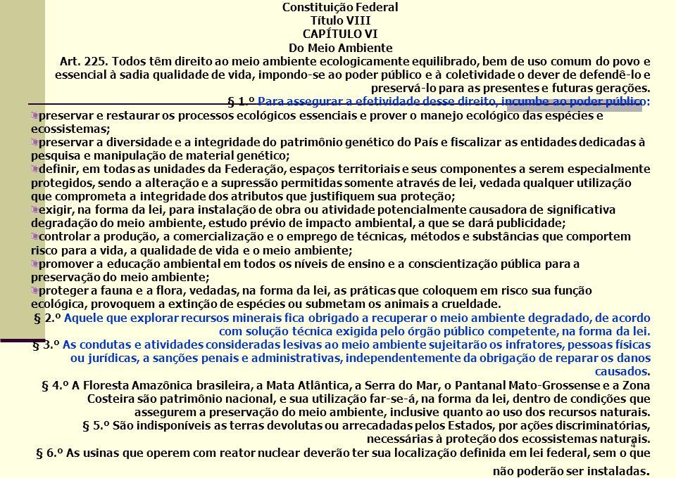 LEGISLAÇÃO AMBIENTAL BRASILEIRA Hierarquia entre as leis: Constituição Leis Decretos Portarias/Resoluções NA AUSÊNCIA DE LEI AMBIENTAL ESPECÍFICA, NORMAS TÉCNICAS PODEM SUPRIR A LACUNA.