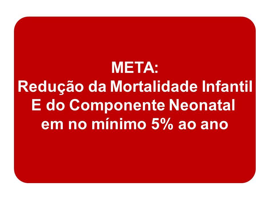 ESTADO TAXA DE MORTALIDADE INFANTIL – 2007 * (por 1000 NV) VARIAÇÃO ANUAL – 2000-2007 (%) META PACTUADA PARA 2009 e 2010 (%) Piauí 26,2-4,2 - 5,0 ao ano Ceará 24,3-5,2 R.