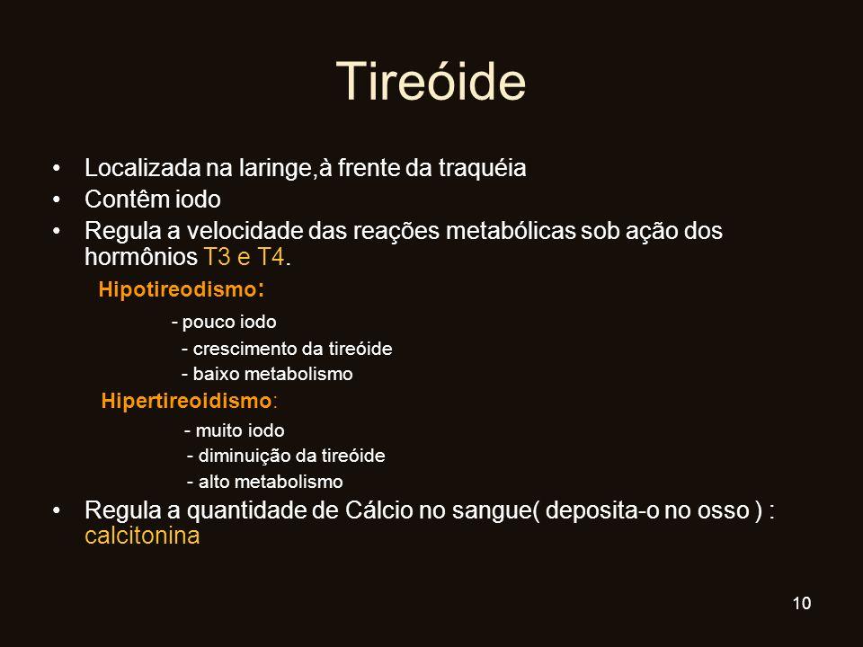 Localizada na laringe,à frente da traquéia Contêm iodo Regula a velocidade das reações metabólicas sob ação dos hormônios T3 e T4. Hipotireodismo : -