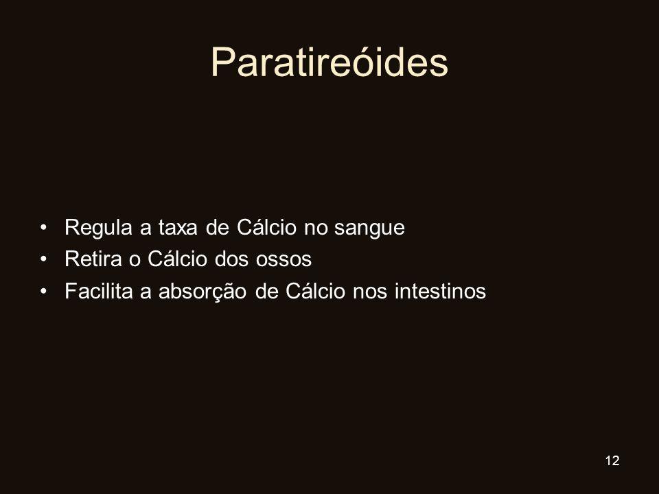 Paratireóides Regula a taxa de Cálcio no sangue Retira o Cálcio dos ossos Facilita a absorção de Cálcio nos intestinos 12