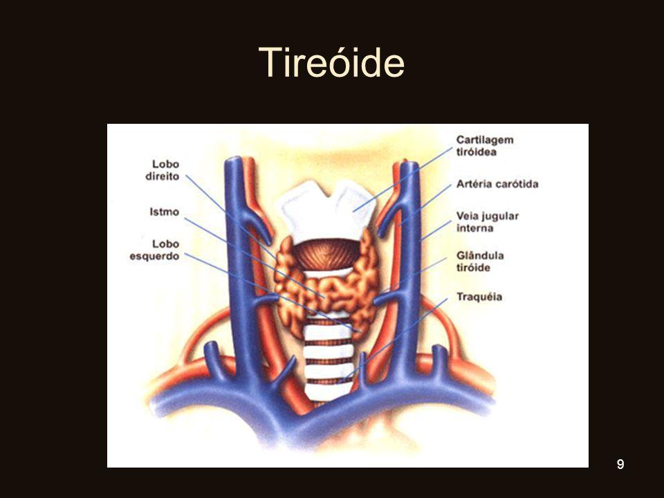 Tireóide 9